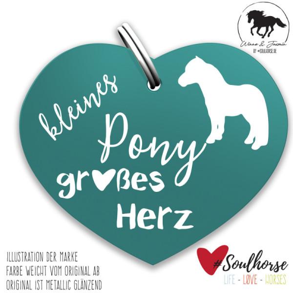 Kleines Pony - großes Herz Herzmarke türkis